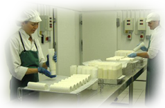Taking cheese from the moulds